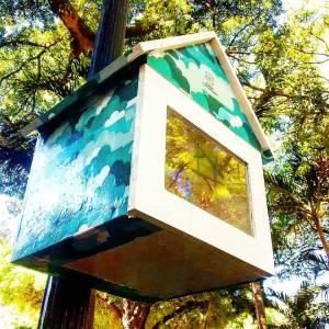 Ninho instalado no Passeio Público - Rua Floriano Peixoto, 90. Imagem: Lucas Ameida/Instagram